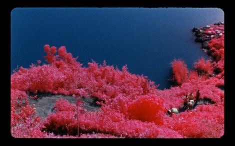Richard Mosse: The Impossible Image
